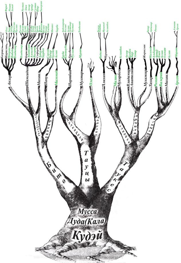 Семейное древо своими руками